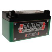 Aliant X2 Lithium Battery
